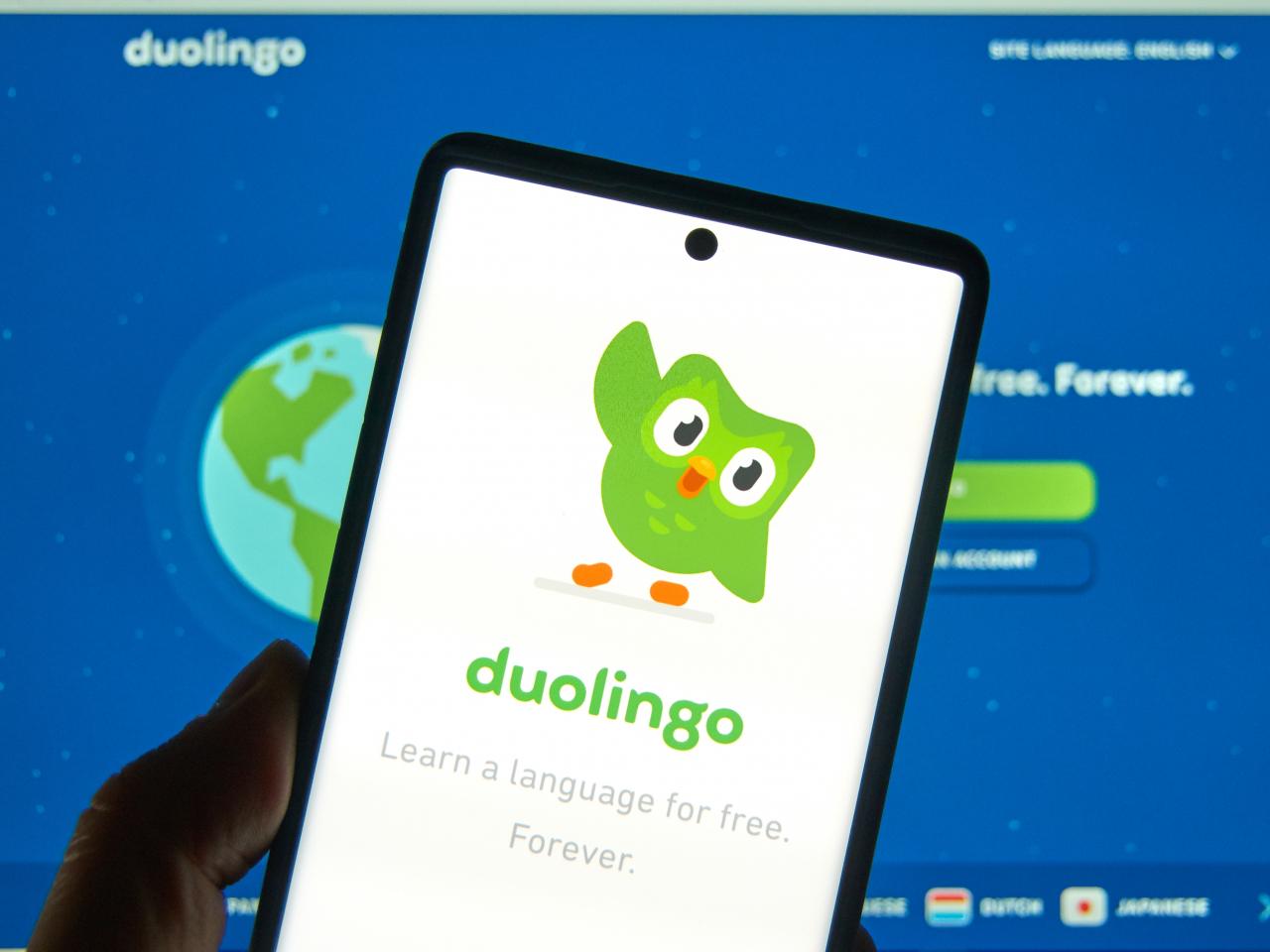 Ansicht der Sprachlern-App Duolingo